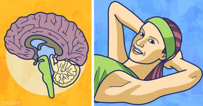 descubre el mejor ejercicio para tu cerebro banner