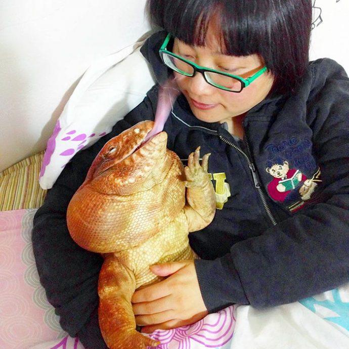 Échale un vistazo a la nueva sensación de Internet: un enorme lagarto de 4 patas que se cree que es un perro