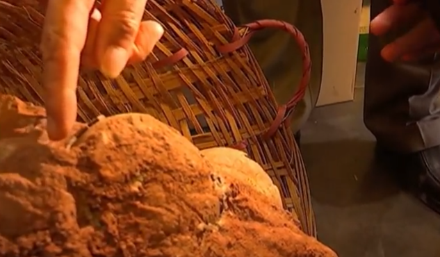 Encuentran un nido de huevos de dinosaurios con más de 70 millones de años en una ciudad de China
