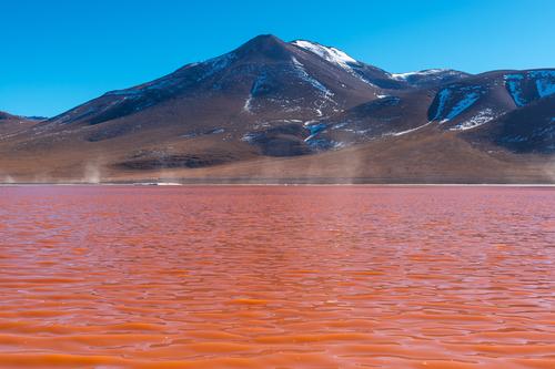 lao de sangre bolivia
