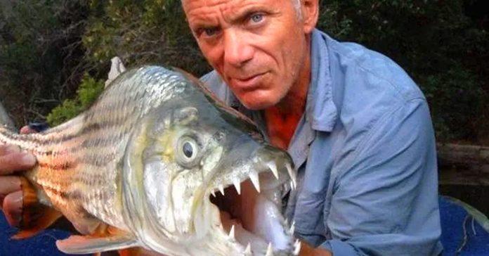 las criaturas mas escalofriantes que te encontraras en un rio banner