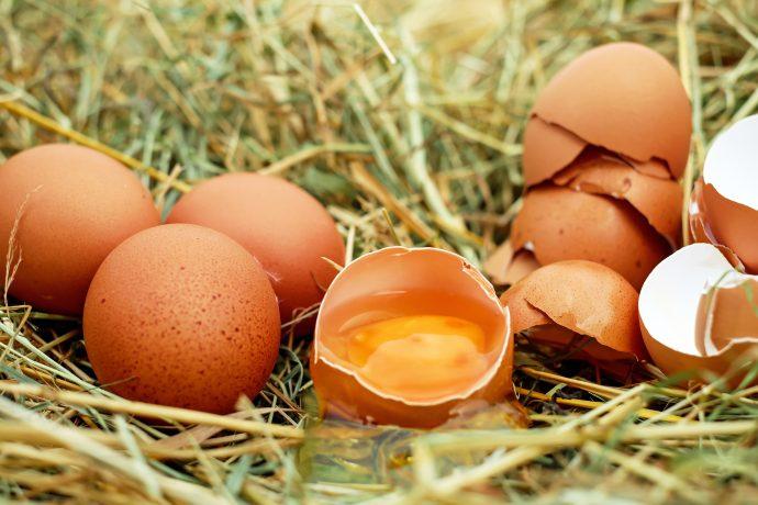 Europeos vs Americanos: Por qué unos meten los huevos en la nevera y otros no