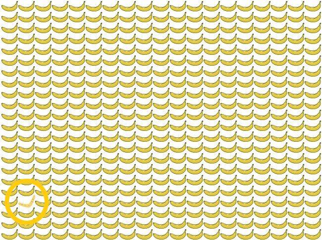 si eres capaz de detectar los fallos de estas imagenes en 10 segundos tiene una vista unica 151084