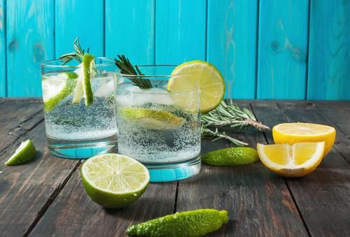 un nuevo estudio afirma que beber gin tonic alivia la fiebre del heno 01