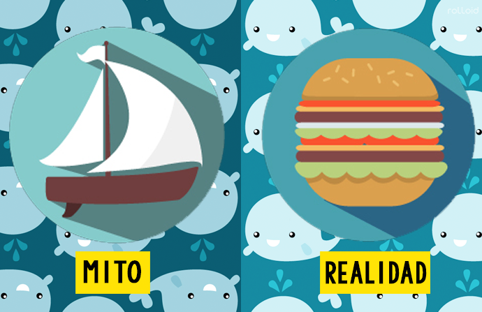 10 de los mitos sobre animales mas extendidos 161238