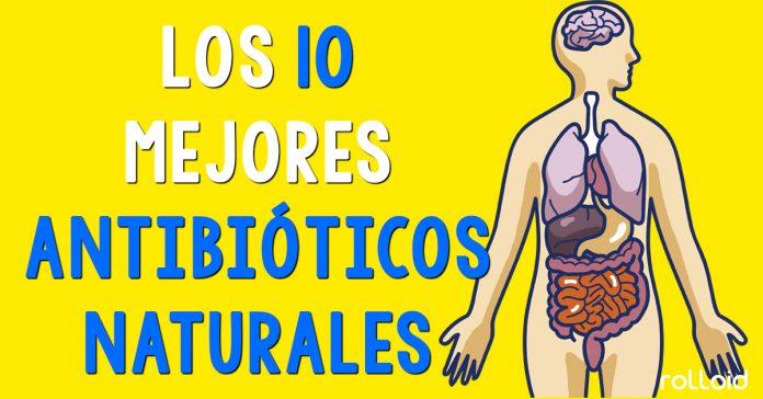 antibioticos naturales banner