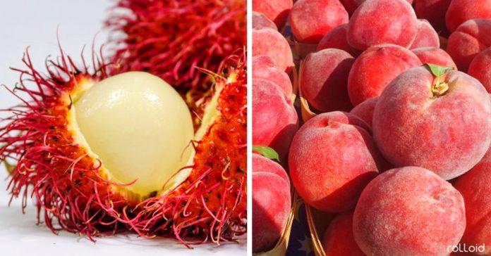 frutas que tienen muchos beneficios contra el cancer banner