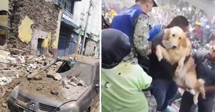 10 imagenes desoladoras de mexico tras sufrir un terremoto de magnitud 71 banner