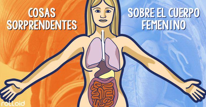 cosas sorprendentes que no sabias sobre cuerpo femenino banner