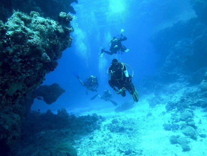 diving 813028 1280