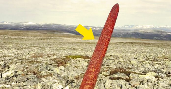 espada vikinga descubierta banner