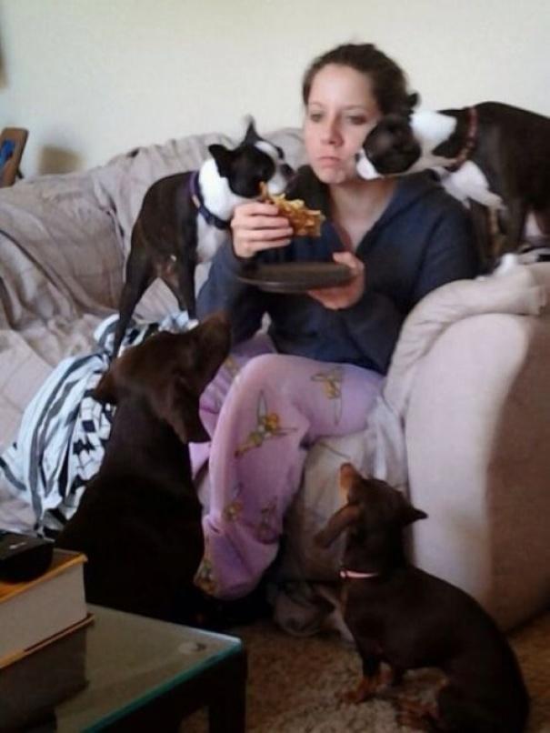 20 Personas que viven con más de 3 animales en casa y que cuentan cómo es su día a día