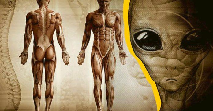 9 razones por las que aun no hemos encontrado extraterrestres banner