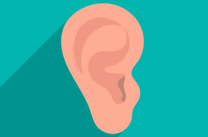 que revelan tus orejas sobre ti 03
