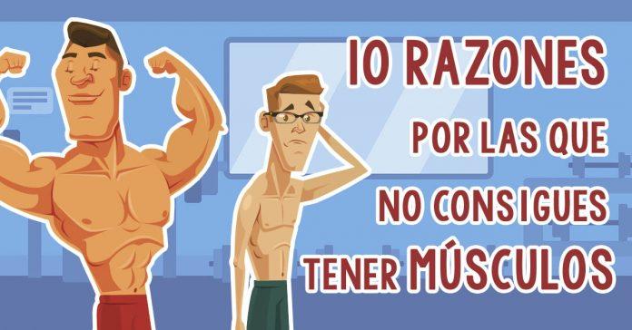 10 razones por las que no estas construyendo musculo banner