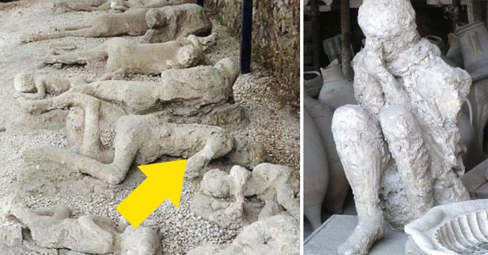 14 curiosidades que probablemente no sabes sobre los cuerpos conservados de la tragedia de pompeya banner