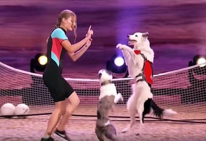 Una chica muestra en directo lo que es capaz de hacer un perro rescatado en una gran actuación de Got Talent
