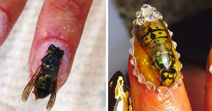 unas postizas insectos bichos banner