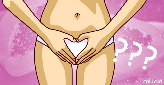 vagina zonas erogenas mujer
