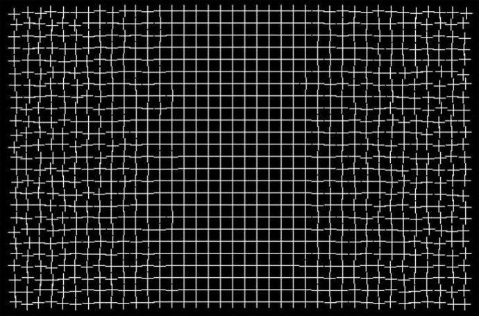 9 Impactantes ilusiones ópticas que consiguieron ganar grandes premios tras confundir a medio Internet