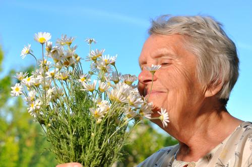 tener problemas para identificar olores podria ser una senal temprana de alzheimer 209654