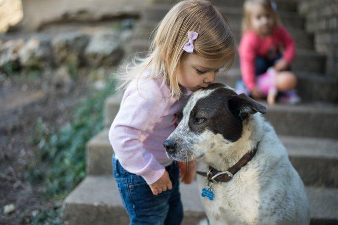 13 Típicas cosas que le ocurren a la gente que tienen bebés y perros en casa