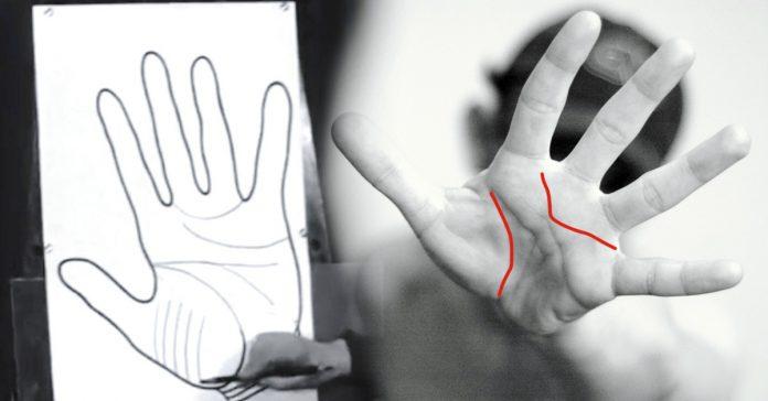 15 sorprendentes cosas que dicen tus manos sobre ti banner