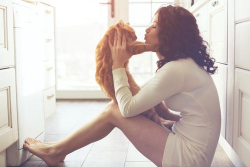como pueden los gatos mejorar tu salud y tu vida 213651