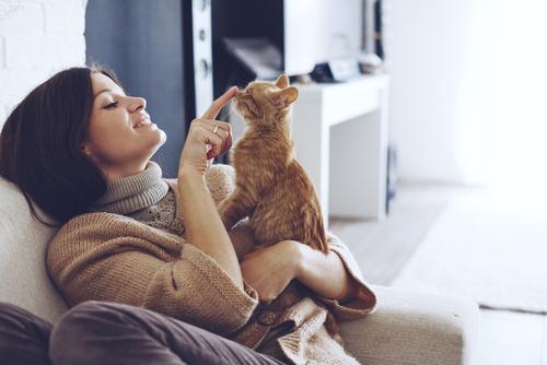 como pueden los gatos mejorar tu salud y tu vida 213652