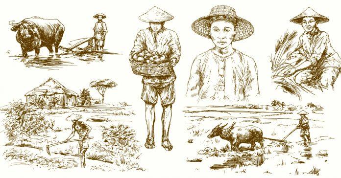 la parabola del granjero el cuento chino banner