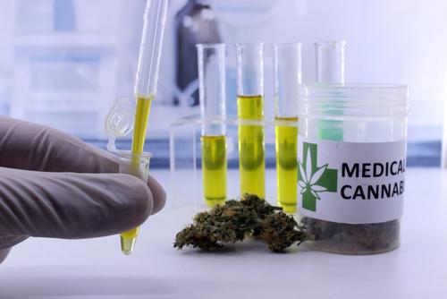 mitos de la marihuana que realmente deberia dejar de creer 213423
