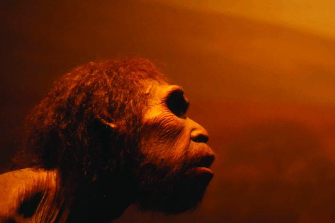 parece ser que hubo muchos mas neandertales de lo que se pensabamos 214125