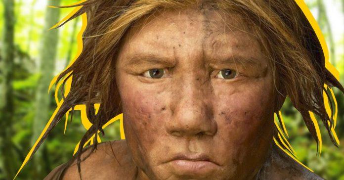 parece ser que hubo muchos mas neandertales de lo que se pensabamos banner