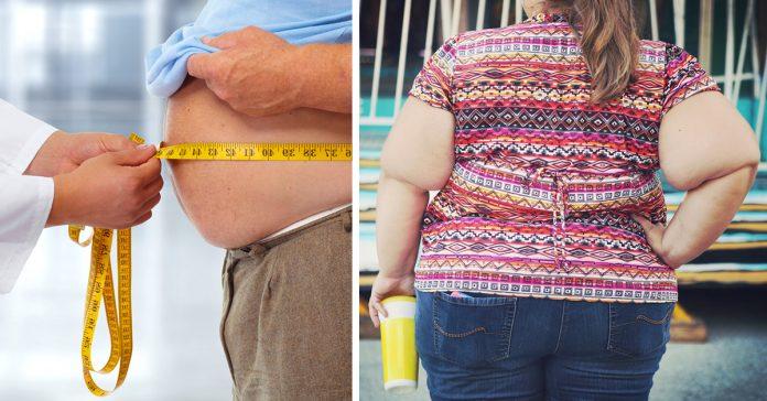 somos mas obesos que nuestros antepasados banner
