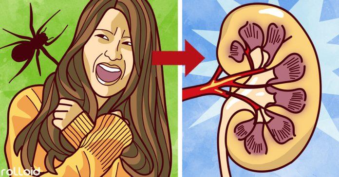 10 sorprendentes formas en las que tus emociones afectan cuerpo banner