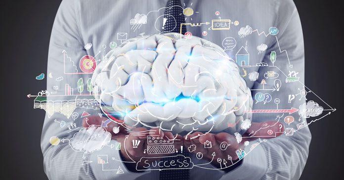 la realidad detras de que los humanos solo empleamos el 10 de nuestra capacidad cerebral banner