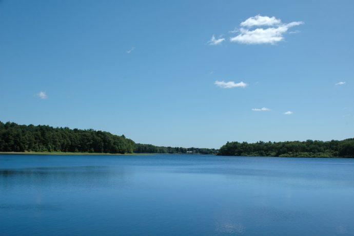 lago wenham