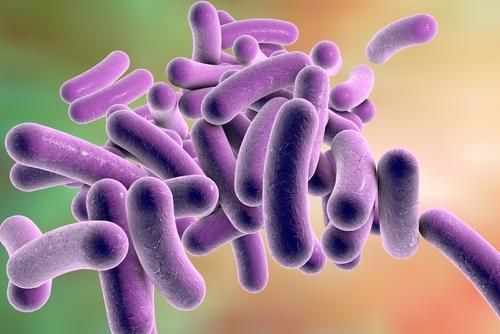 las 10 enfermedades mas fascinantes que puede oler 218513
