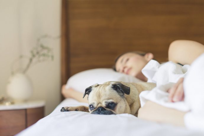 8 Cosas que le ocurrirán a tu cuerpo si seguimos usando el móvil en la cama antes de acostarnos