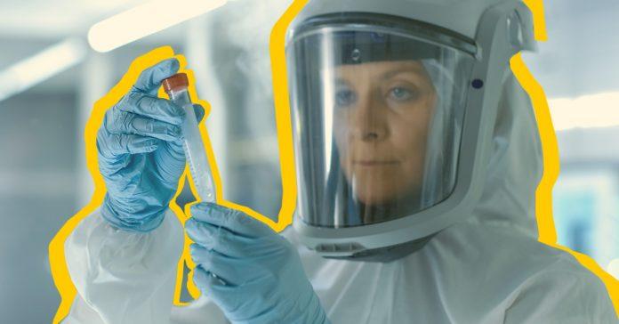 8 enfermedades infecciosas que cambiaron la historia banner