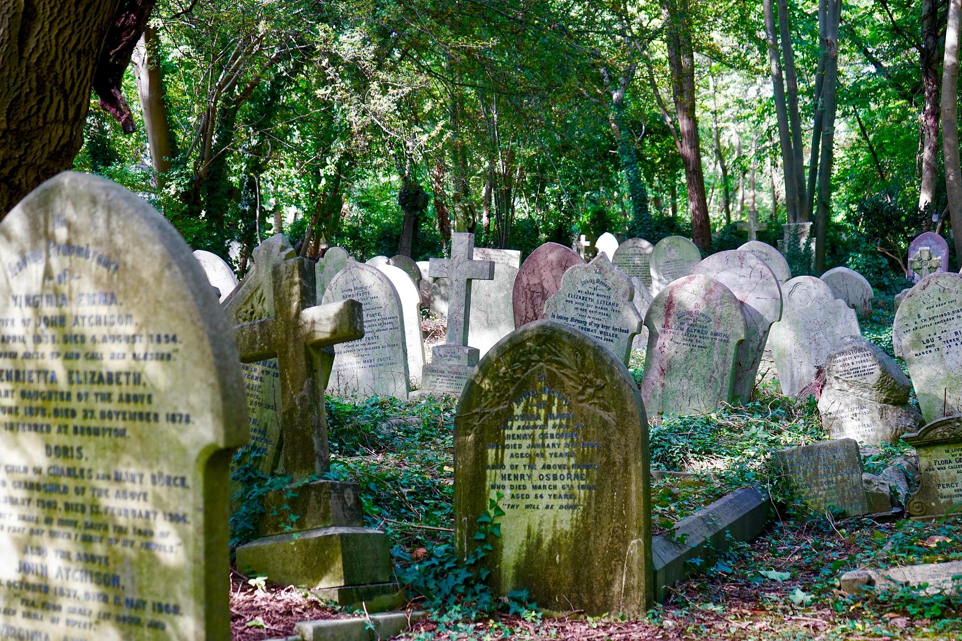 cemetery 2800634 1920