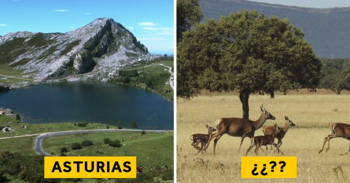 los 10 parques nacionales mas impresionantes de espana banner 1