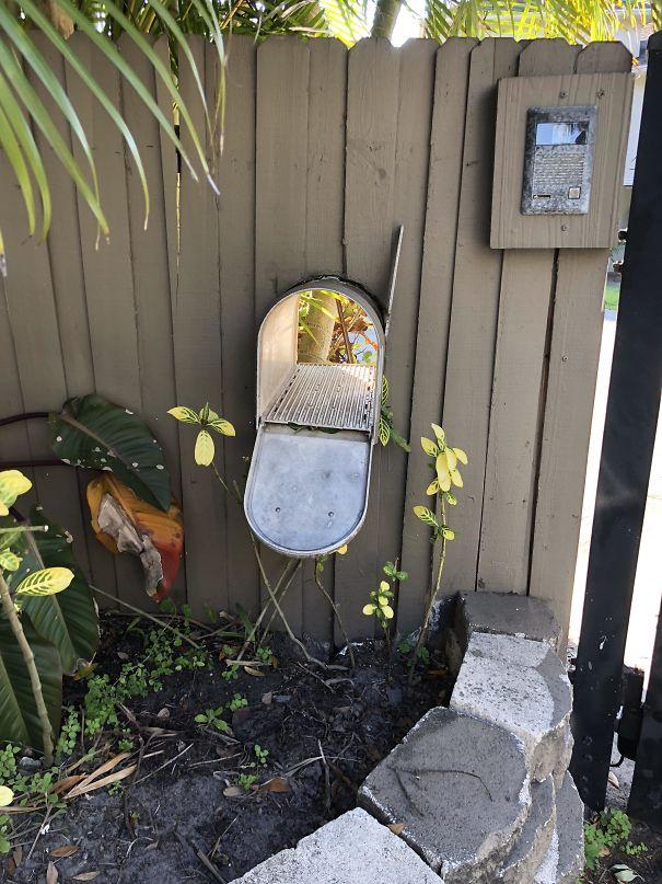 20 Imágenes de los buzones más extraños que los vecinos han puesto en su jardín para asustar a los carteros