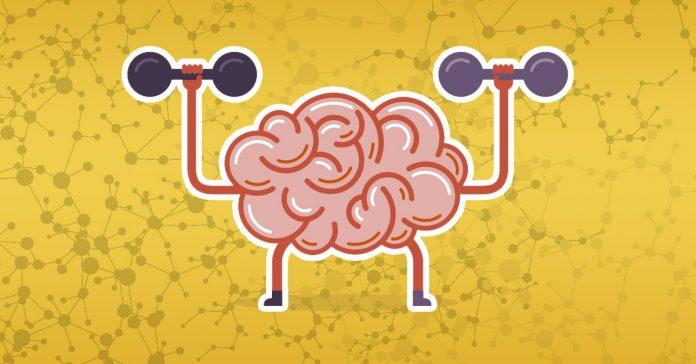 5 habitos que te ayudaran a regenerar las neuronas banner
