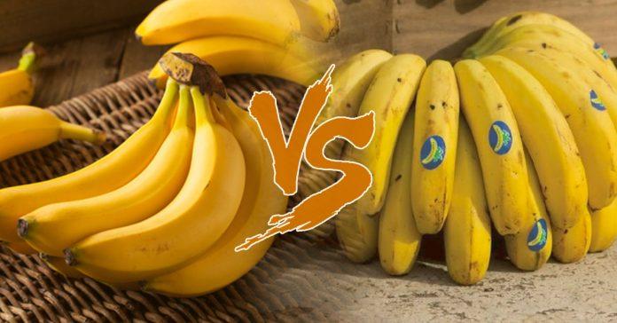 banana vs platano banner