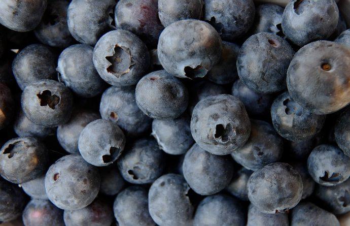 blueberry 3357568 960 720