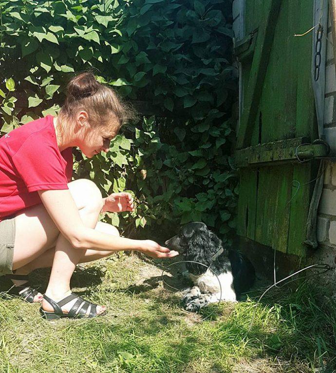 Una mujer salva la vida del perro que se encontró mojado y con algo extraño atado alrededor de su cuello
