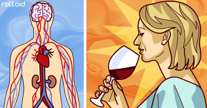 mito o realidad es bueno tomar copa vino al dia banner