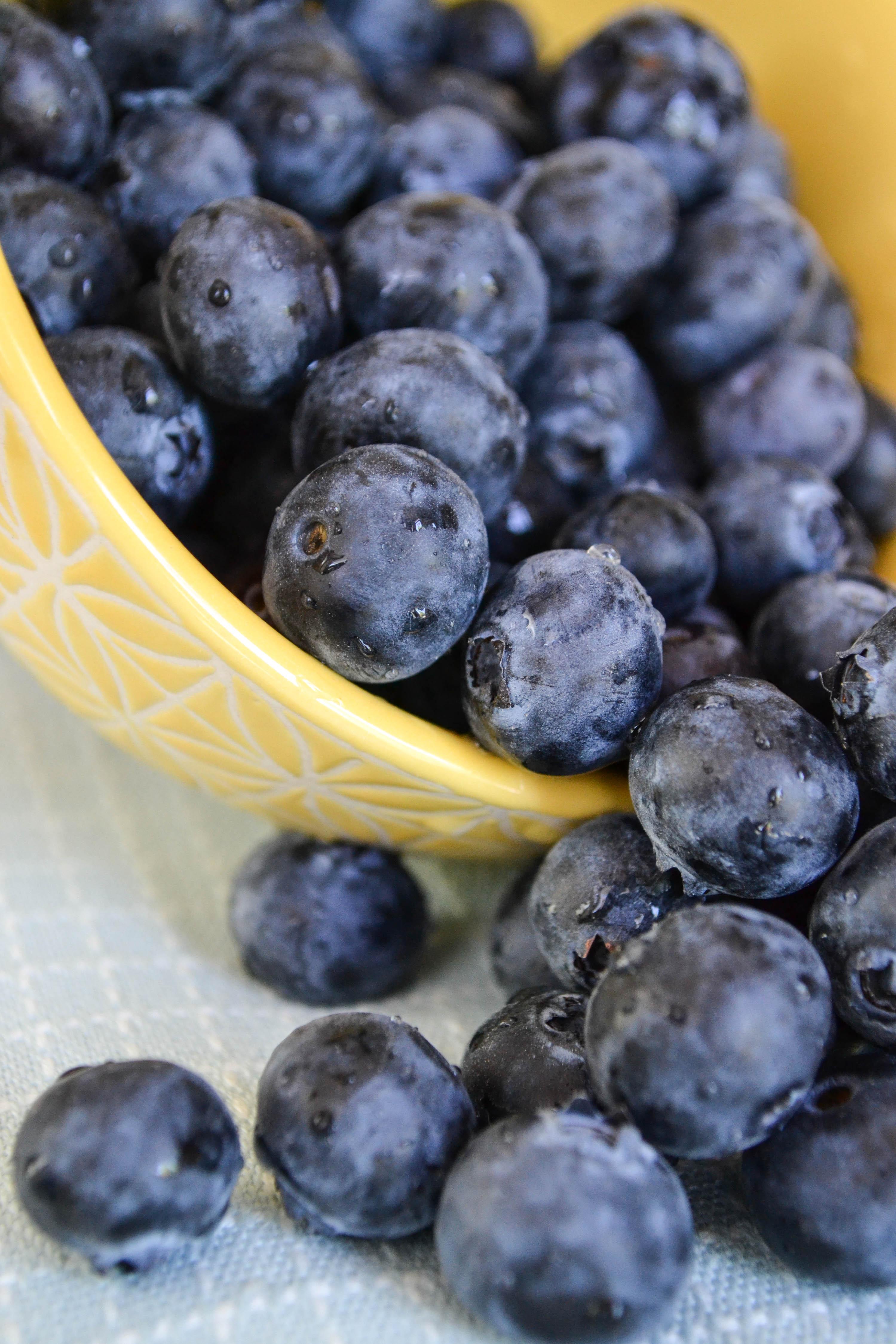 plant fruit berry food produce blueberry 1168002 pxhere.com