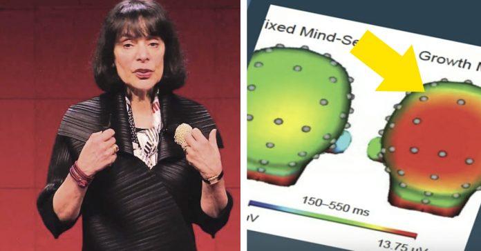 una psicologa explica que mentalidad necesitas para tomar control vida banner